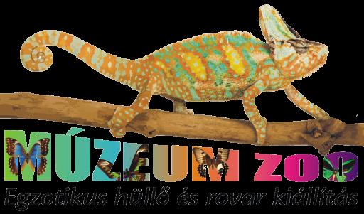 MÚZEUM ZOO KESZTHELY
